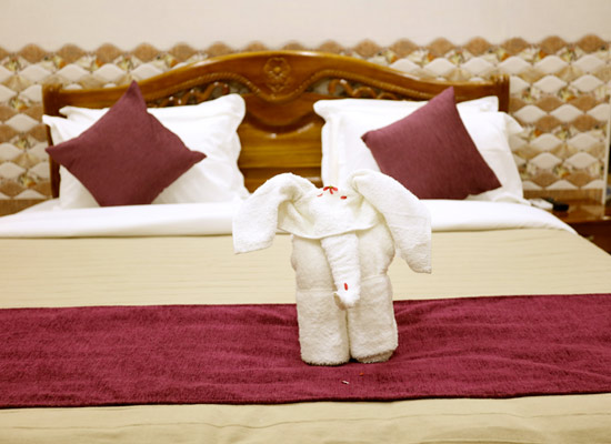Home stay in Thanjavur, Budget Hotels in Thanjavur,home stay, budget stay, business class hotels in thanjavur
